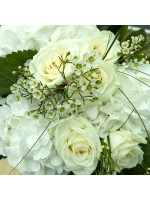 Wax roses et hortensias blancs