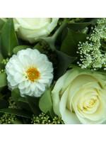 Dahlias et roses