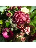 roses ramifiées gros plan