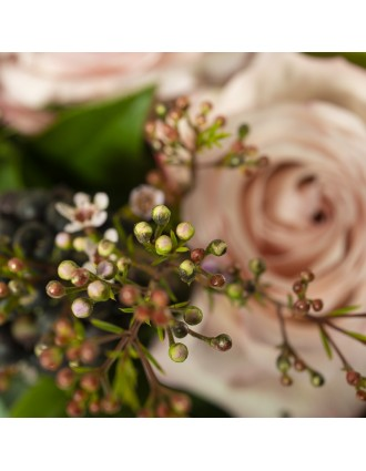 Fleur de cire et rose